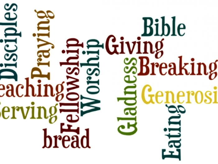 Holy Habits Wordle